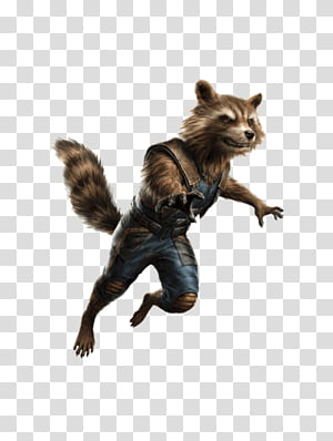 Avengers Endgame Rocket Raccoon PNG