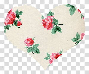Miscellaneous s, white, green, and red floral heart illustration PNG