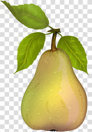 Pears , yellow pear fruit PNG